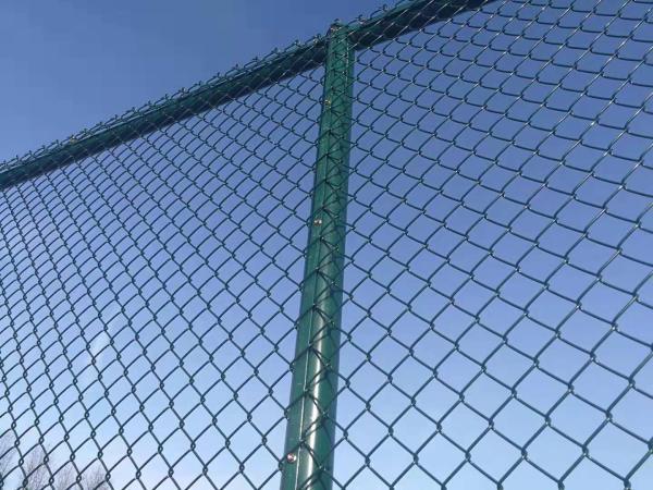 球场围网现场安装/技术指导