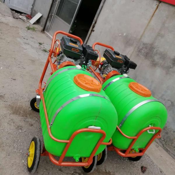 汽油果樹殺蟲噴藥機 綠化樹木手推噴藥機
