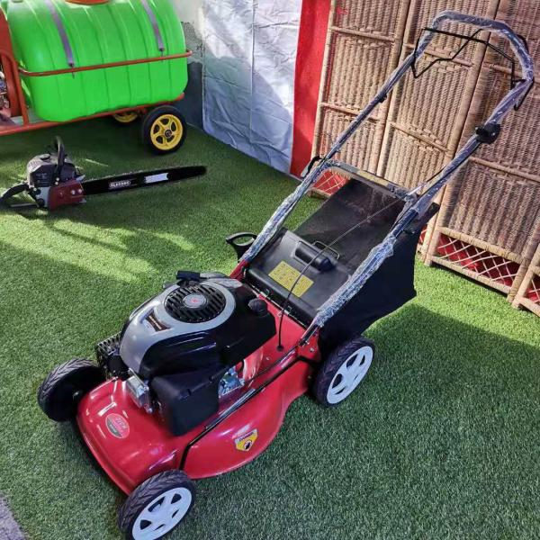 綠化景點草坪修剪機