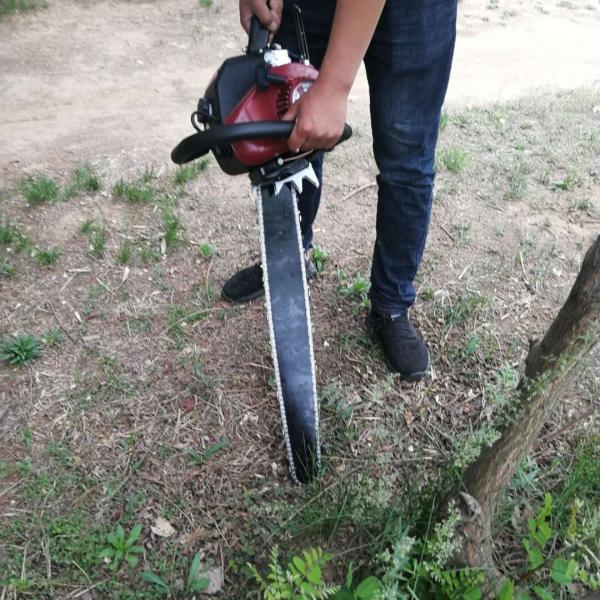 马力强劲的汽油挖树机 苗木移植挖树机