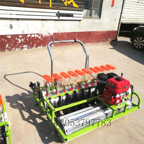 自走式蔬菜播種機 小型汽油蔬菜藥材精密播種機