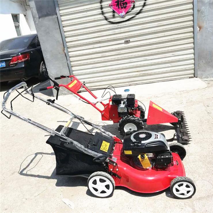 自走式碎草机 汽油草坪机