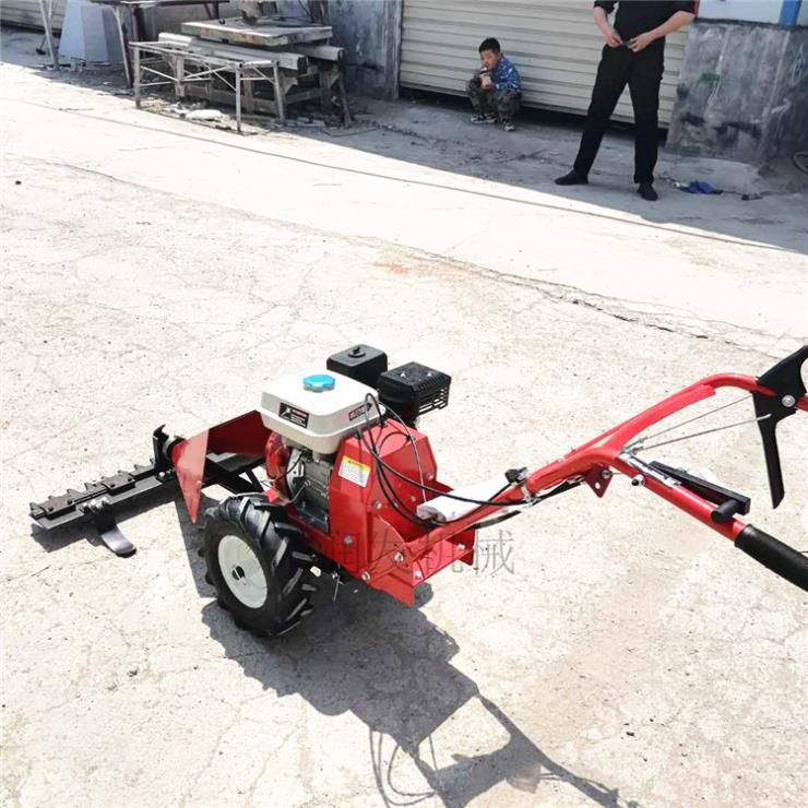 多功能家用汽油割草机 自走式家用剪草机
