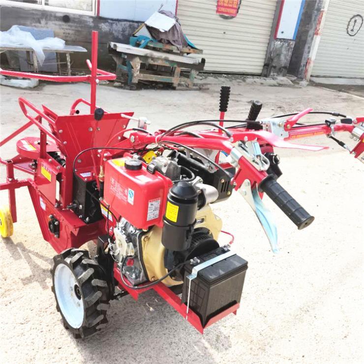 高产量扒皮收苞米机 一体式玉米收获机