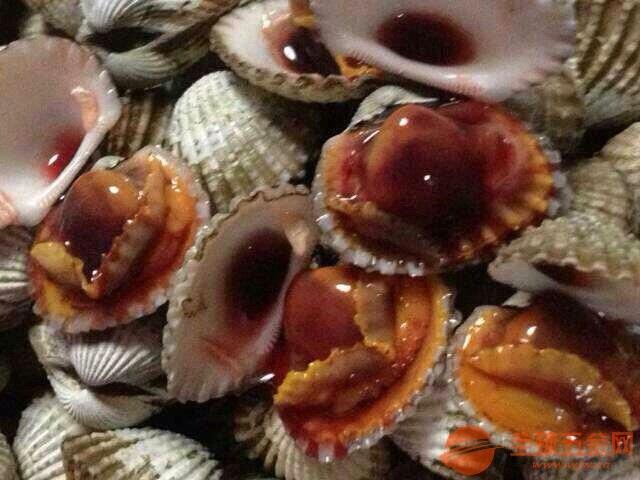 温州血蛤,乐清花蛤,乐清本地花哈 温州