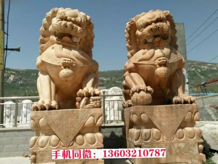 石狮子图片大全 石雕狮子厂家