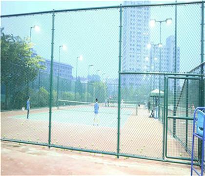 编制式球场围网生产工艺 编制式球场围网厂价直销