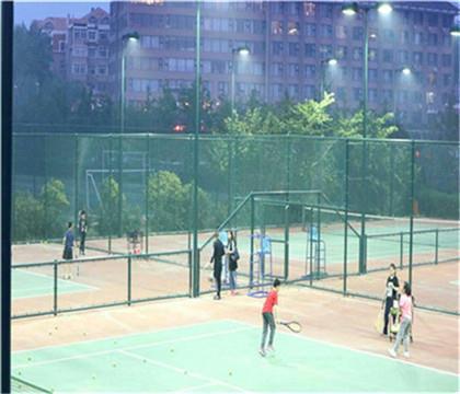 编制式球场围网产品质量 编制式球场围网厂家供应