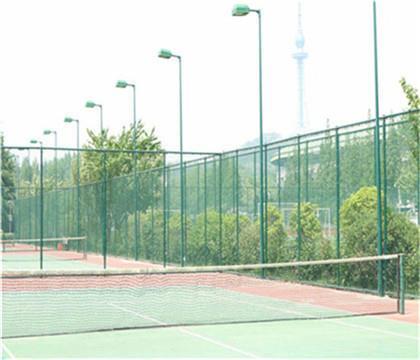 编制式球场围网安装效果 编制式球场围网产品批发