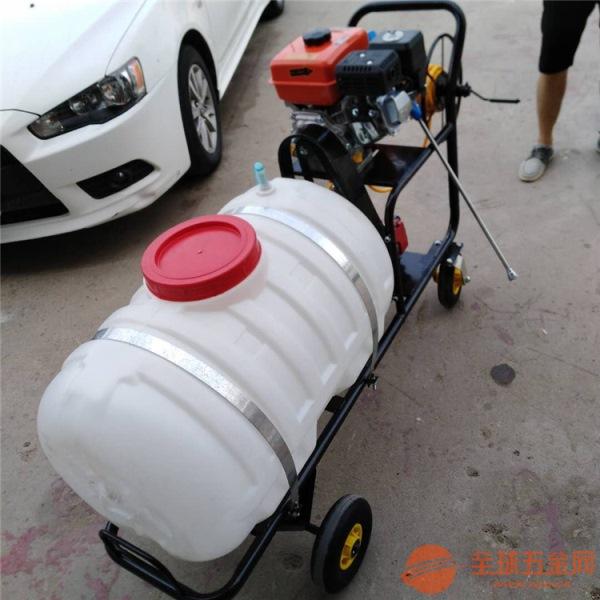 打药机(车)汽油动力打药车多型号厂家
