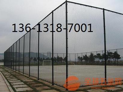 組裝圍網,拉網式籃球場圍網價格,噴塑球場圍網,