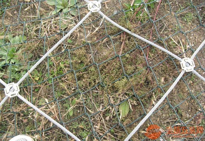 边坡锚固防护网产销一体
