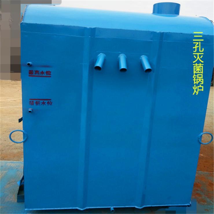 食用菌常压灭菌锅炉厂家食用菌机械厂家湖北福建灭菌锅炉