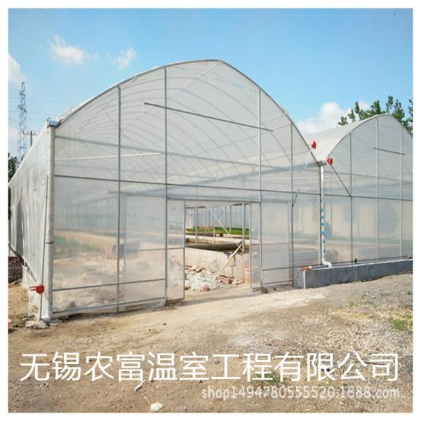 珠山区蔬菜大棚管库存