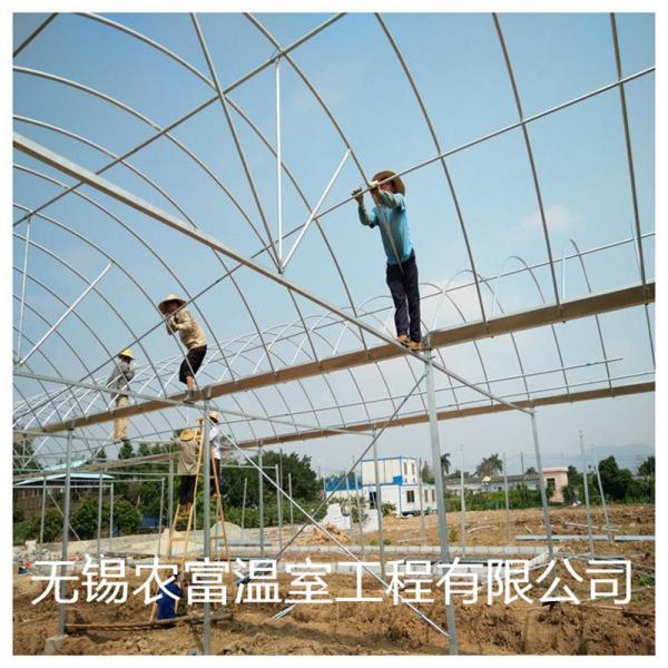 惠城區溫室大棚管安裝價格