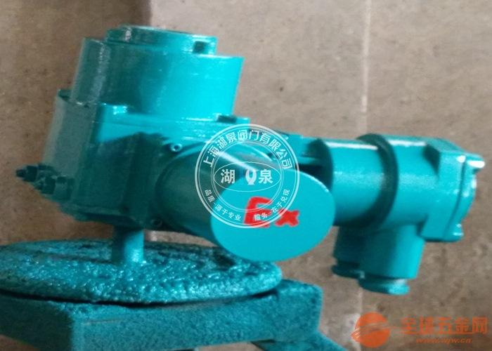 DZW60-24EB防爆阀门电动头