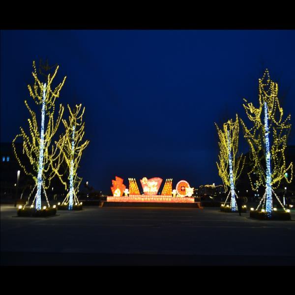 夜景亮化-亮化工程-树木照明亮化设计施工-禾雅照明
