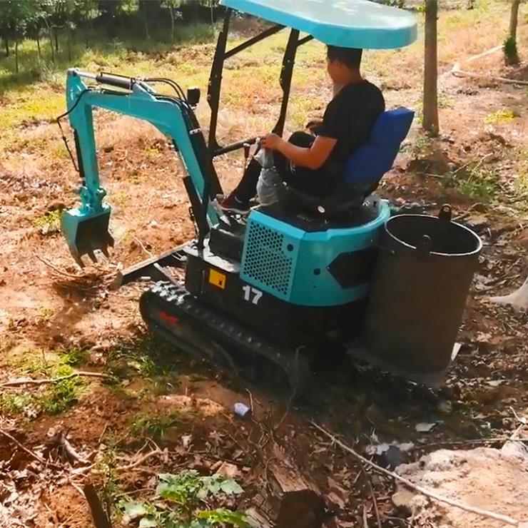 小型挖掘机/散料装车斗式提升机/六九重工园林绿化栽树
