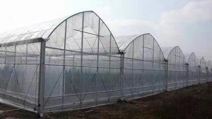 合作连栋大棚一亩用多少材料安装搭建在亚博能安全取款吗