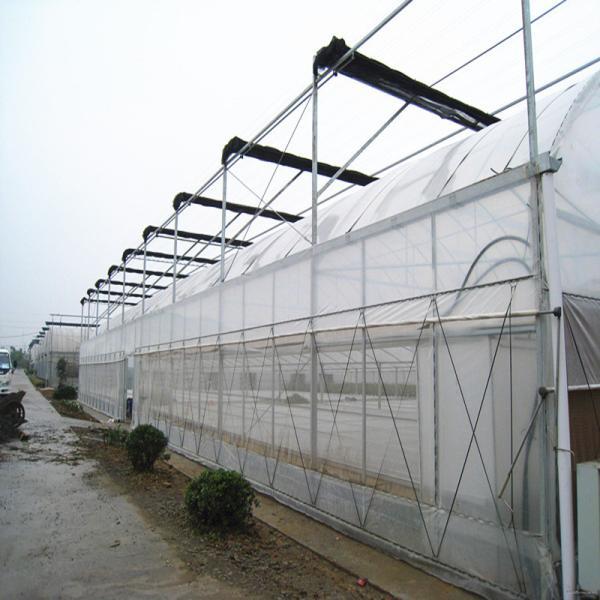 青云谱区连栋大棚钢管 连体大棚管生产厂家