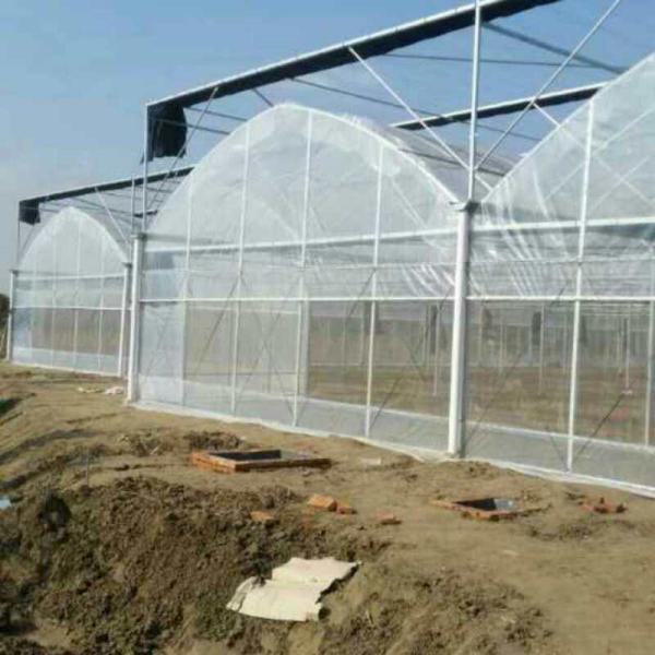 临汾蒲县连栋大棚设计方案 安装施工专注温室工程