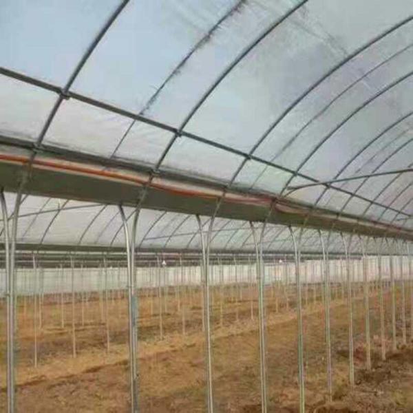 江门大棚管一支多少钱 大棚管多少钱一亩温室技术