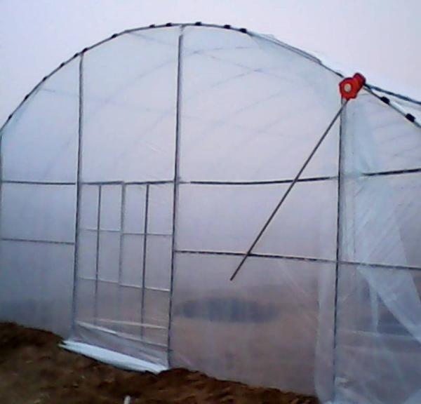 江夏区木耳大棚管 连体大棚种植产品动态