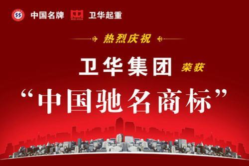 新闻:【卫华集团】双主梁龙门吊高陵县规格