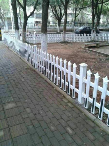 温州泰顺县校园护栏可以现场验货
