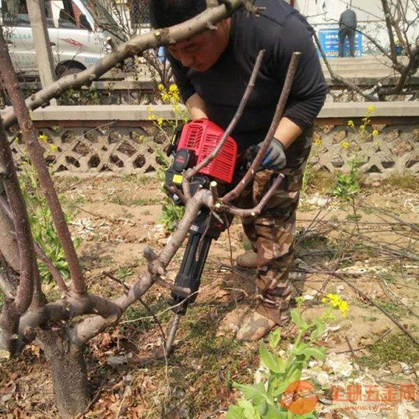 汽油挖树机 新型挖树机 冬季挖树机产品