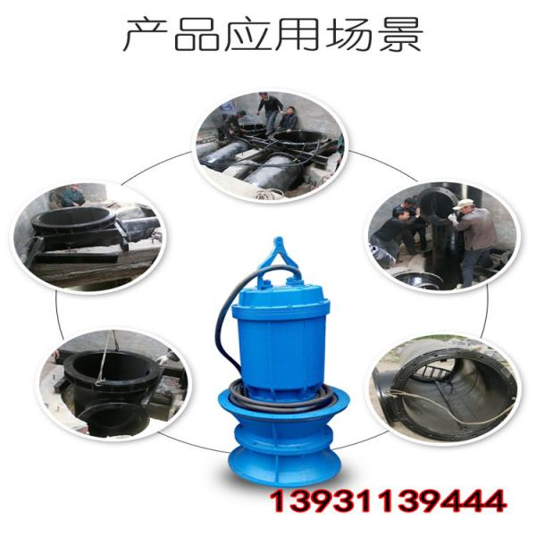 ZJQ40-12-4立式清淤泵选型参考