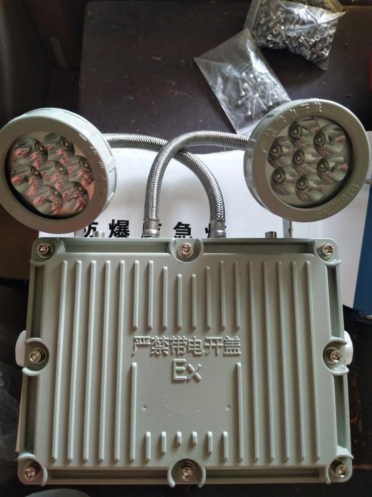 双头应急灯/LED防爆应急灯24V/36V220V