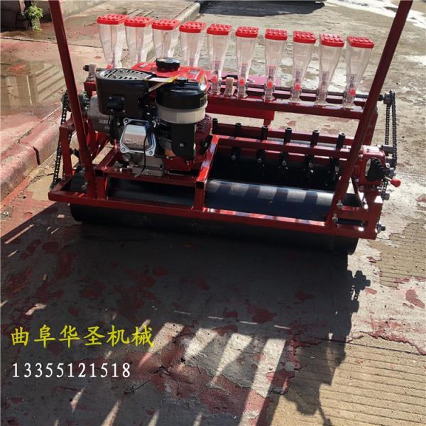 平武县电动自走蔬菜精播机信誉保证_服务为先