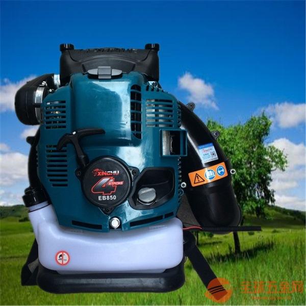 汽油吹尘机高效稳定的吹雪机 马鞍山
