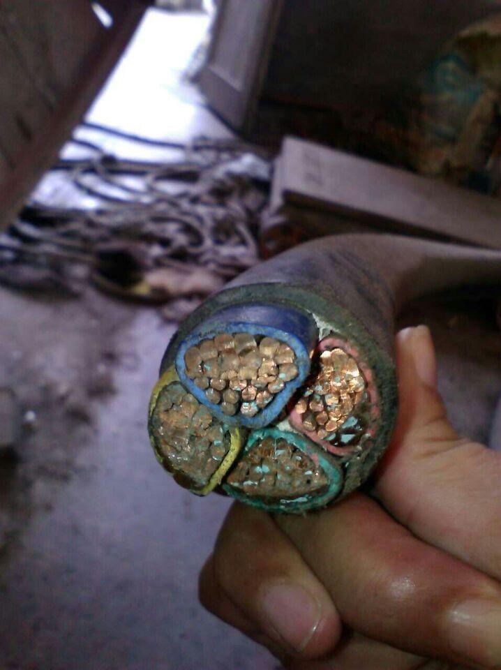 (青龙电缆回收)-青龙电线电缆回收量大价高