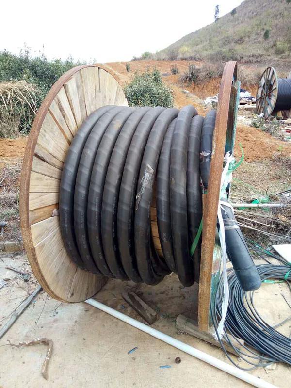(西华电缆回收)-西华电线电缆回收按米报价