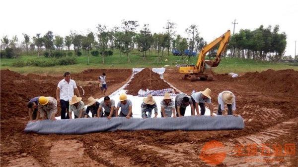 珠海鈉基膨潤土防水毯廠家