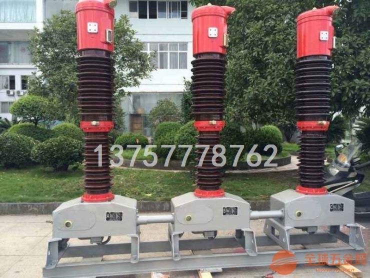 智能真空断路器 ZW32-12F/630 生产厂家