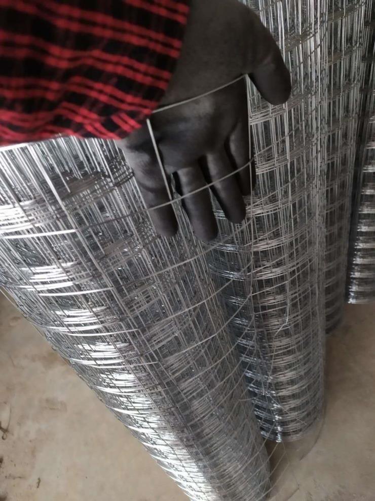 黄山电焊网片批发