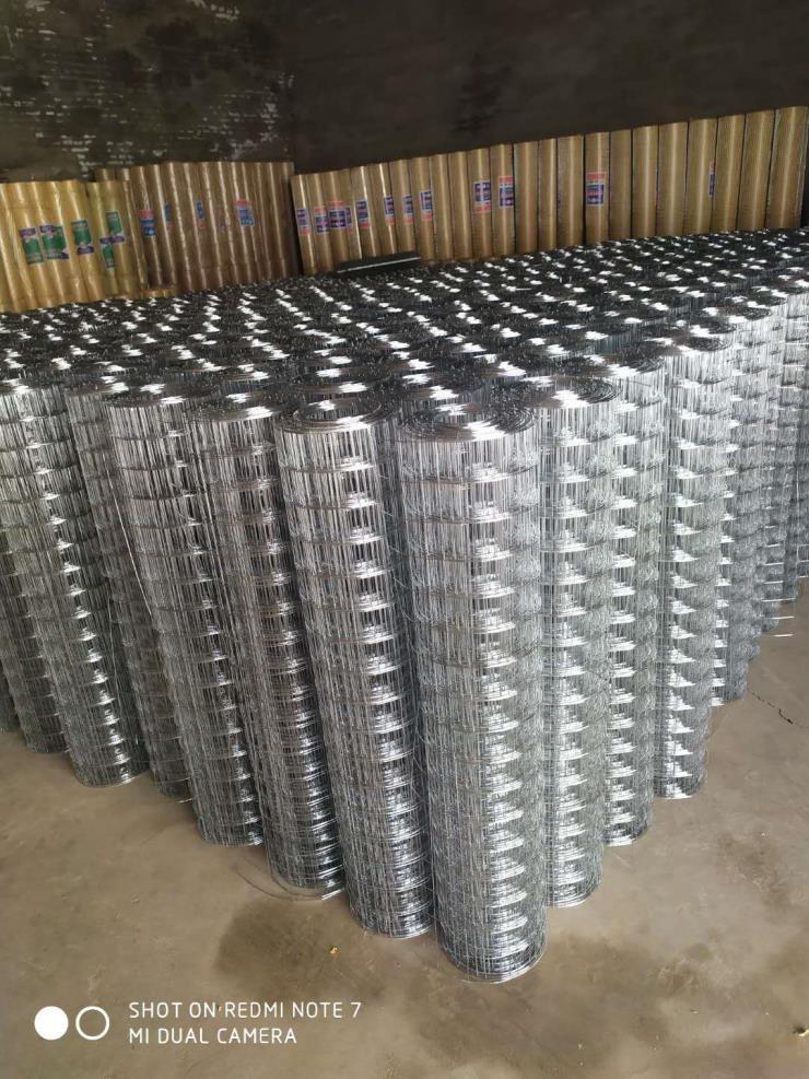 遵义外墙热镀锌电焊网价格