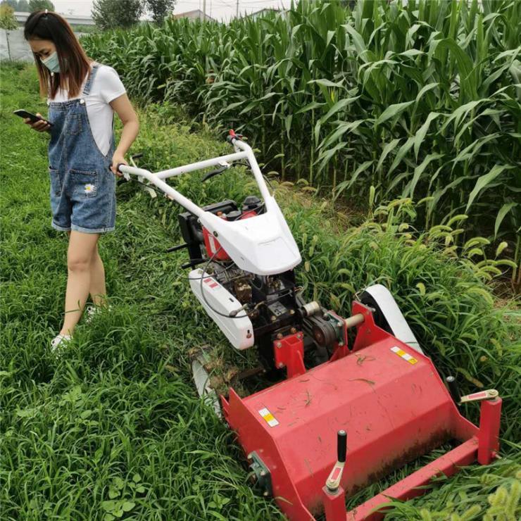 茶园用碎草还田机 农用自走式碎草机 手推式荒草灭草机