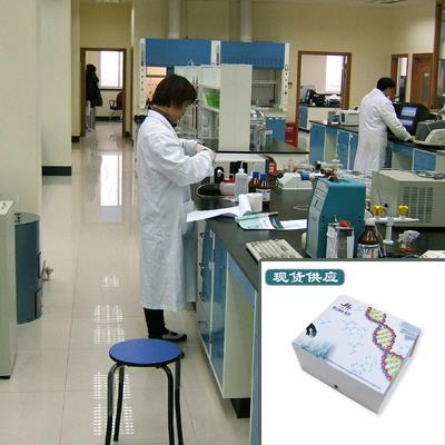 NRG1檢測試劑盒選用高質量抗體/試劑