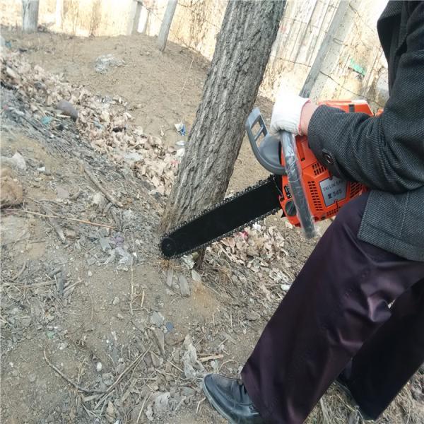河池優質新式挖樹機起樹神器挖苗機