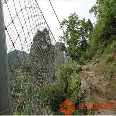 RX100防护网厂家直销|昆明四川成都被动边坡防护网定做