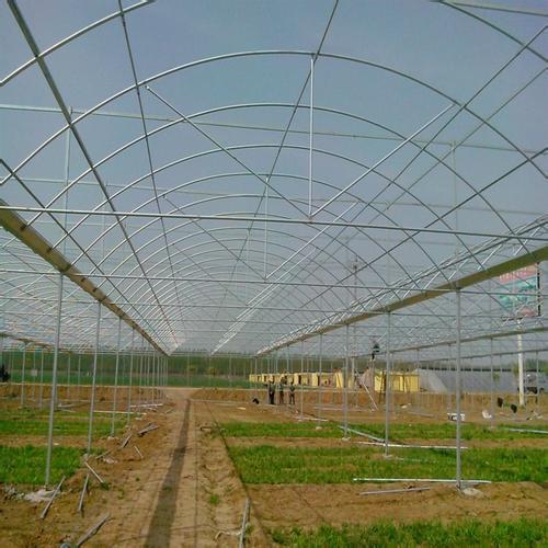 新闻:上海普陀连栋大棚管上海普陀蔬菜温室大棚 椭圆管大棚30*80