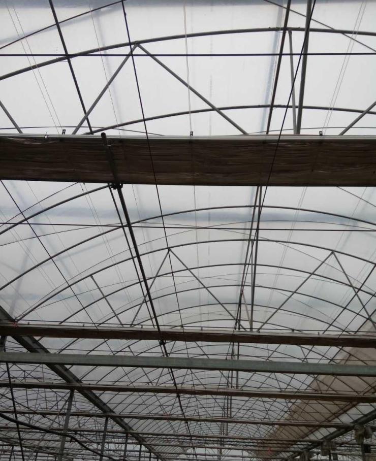 新闻:涪陵区连栋大棚管涪陵区蔬菜温室大棚 椭圆管大棚30*80