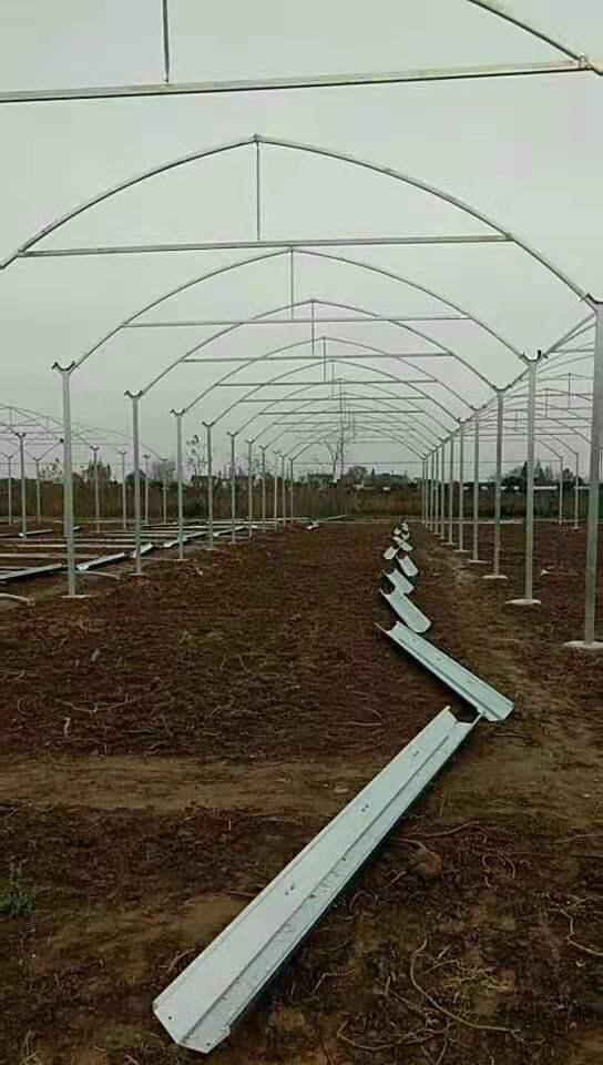 新闻:台州天台连栋大棚管台州天台蔬菜温室大棚 椭圆管大棚30*80