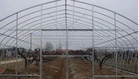 新聞:杭州西湖大棚管杭州西湖果樹大棚管杭州西湖果樹大棚鋼管構造圖