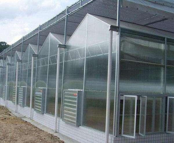 新闻:湖州安吉大棚管湖州安吉连体大棚管湖州安吉金州牌玻璃连栋