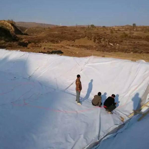 朔州200g濾水透水養護路面土工布價格保濕土工布便宜便宜